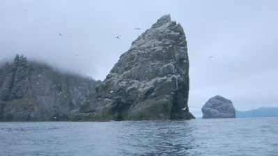 St Kilda, a paradise for birds, Boreray by Stephen Hodges