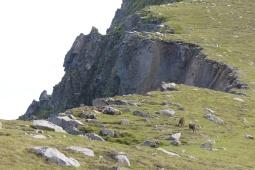 Les falaises du Gap ©Camille Peney