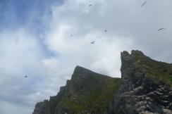 Au pied des falaises de Boreray ©Camille Peney