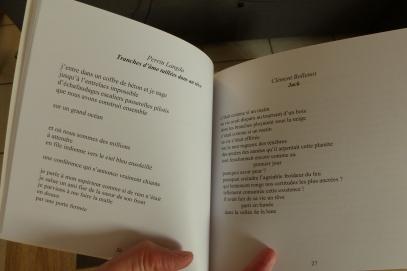 Un rêve, anthologie poétique aux éditions de l'Aigrette