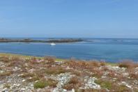 La côte de l'île de Sein ©Camille Peney