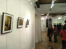 D'une réalité à l'autre : vernissage de l'exposition à la mairie du 1er arrondissement de Lyon